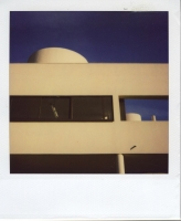 25_mollywoodwardpolaroids074.jpg